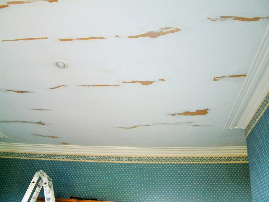 How to eliminate cracks in period house ceilings blog by Impressions Painting Decorating